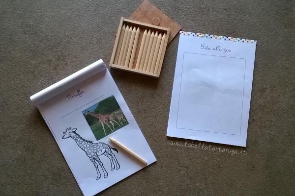 Montessori attivit animali zoo la bella tartaruga - Porta libri montessori ...